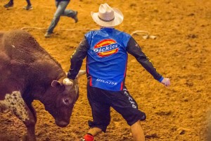 Jim Clash with bull Horny Toad at Billy Bob's Texas just before being thrown. (Photo: Andy Gregory/Humps n Horns Magazine)