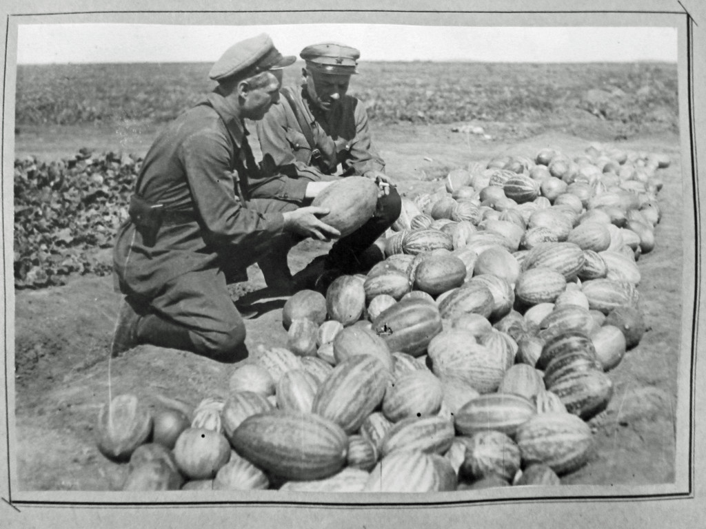 KARLAG personnel checking the crops. Photo Cortesy Bolashak Univesrity